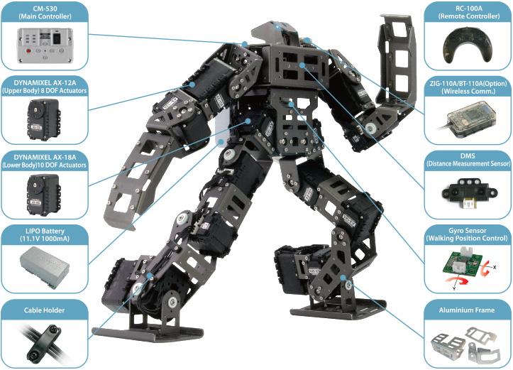 Bioloid Robots